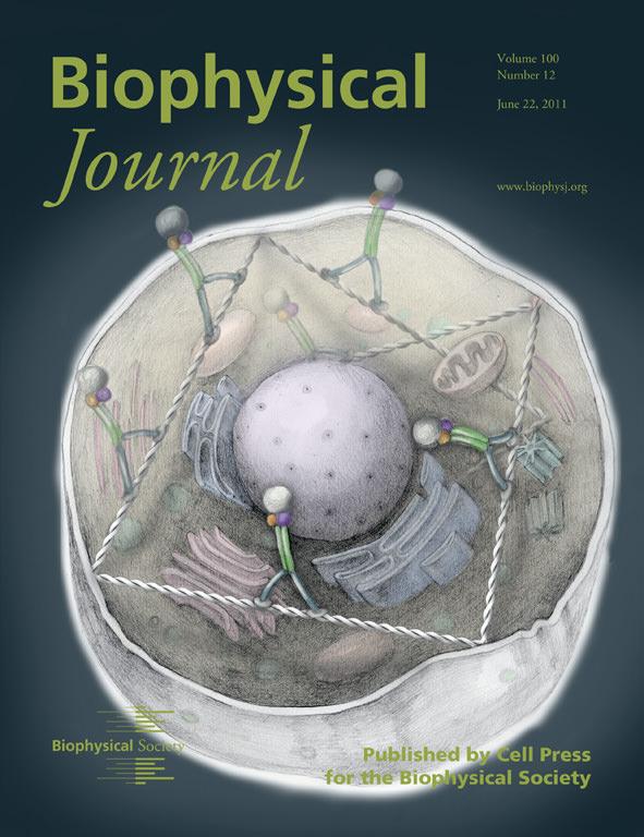 Scientific Journal Cover Art