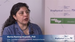 Inclusion & Diversity at the Biophysical Society