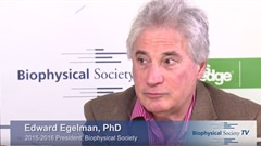 Interview with Ed Egelman, PhD, 2015-2016 BPS...
