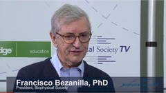 Interview with Francisco Bezanilla PhD,...