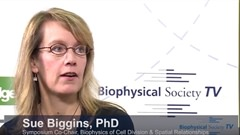 Biophysics of Cell Division & Spatial...