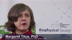 Interview with Margaret Titus, PhD - Myosin...