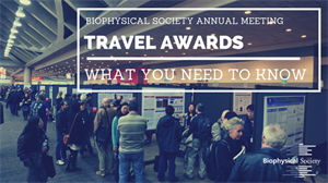 Everything You Need to Know About Travel Awards for the 2019 BPS Annual Meeting