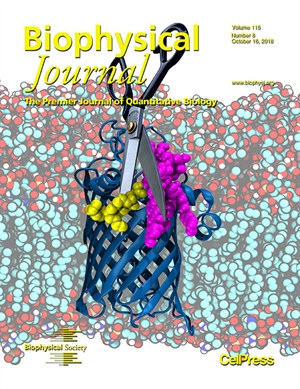 Cutting the Tails Off: LpxR Deacylates Lipid A by Removing Two Lipid Tails