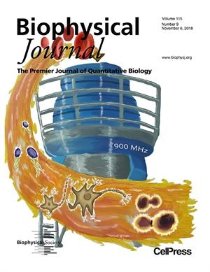 The Expanding Zoo of In-Cell Protein NMR