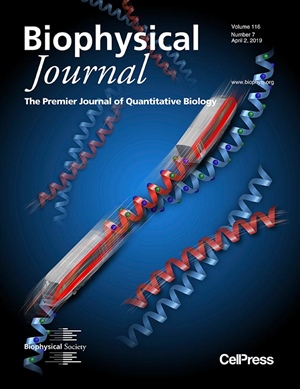 Sliding Diffusion Along One-Dimensional Protein-Protein Interface