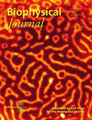 Giant Unilamellar Vesicle Dominates BJ Cover