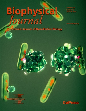 My Favorite Biophysical Journal Papers of 2019 – Part 1