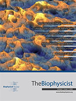 The First Issue of The Biophysicist is Published!