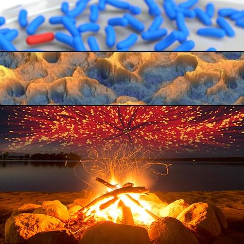 A Fireside Chat with the BPS Journal Editors - Biophysics Week Webinar